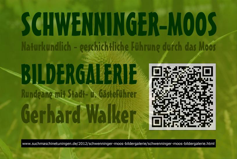 +++ Schwenningen | Schwenninger Moos Bildergalerie | 2012 | suchmaschinetuningen.de +++